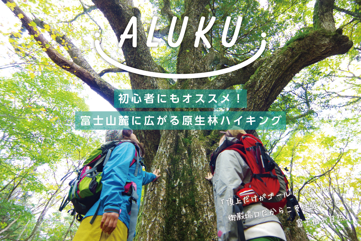 初心者にもオススメ!富士山麓に広がる原生林ハイキング