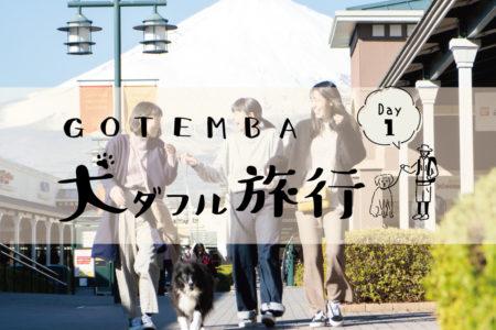 GOTEMBA犬ダフル旅行【DAY1】