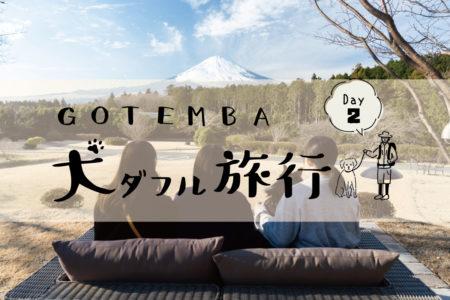 GOTEMBA犬ダフル旅行【DAY2】